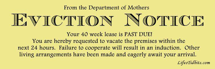 Baby eviction notice, courtesy of the internet